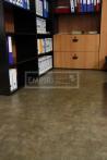 Vinylové podlahy dekor dřevo, dlažba - Vinyl Brown