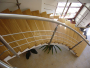 Masivní schody  DUB průběžná spárovka